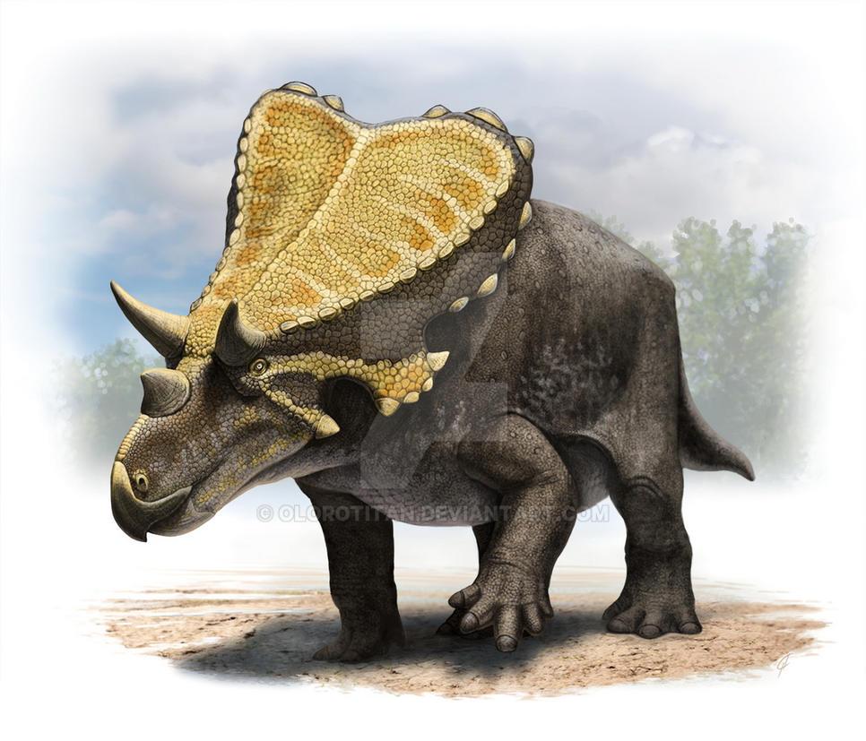 Mercuriceratops by Olorotitan