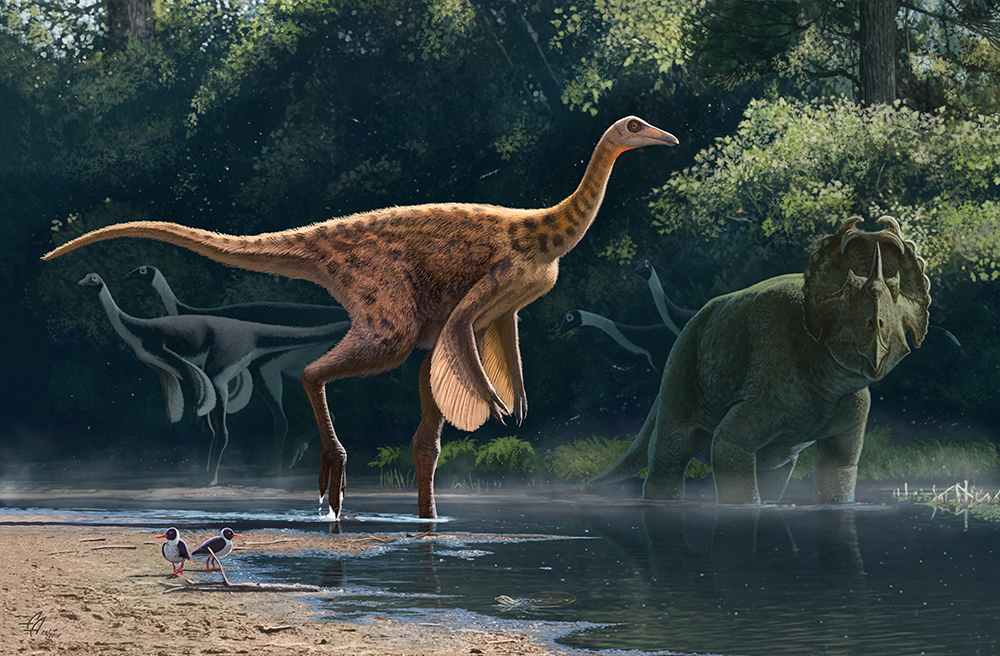 Awesome Paleoart  Rativates_evadens_by_olorotitan-dailu38