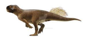 Psittacosaurus sp. (SMF R 4970)