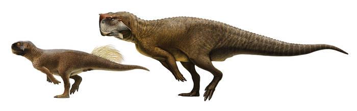 Psittacosaurus sibiricus and P. sp. (SMF R 4970) by Olorotitan