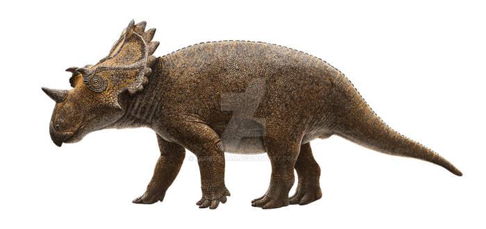 Regaliceratops