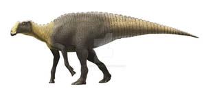 Gryposaurus monumentensis