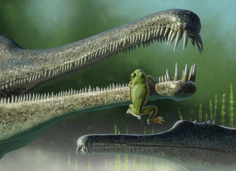 Triassic frog