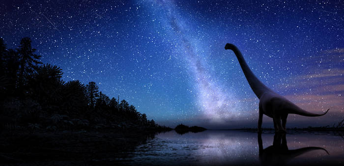 Sauropod and stars