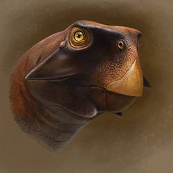 Psittacosaurus lujiatunensis