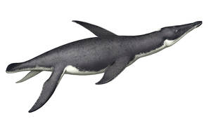 Pliosaurus irgisensis
