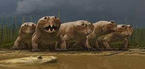 Hyperodapedon and Metoposaurid