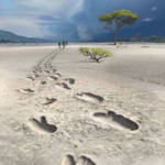 Footprints of Australopithecus
