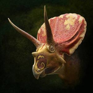 Thornton Torosaurus