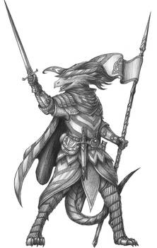 [COMMISSION] Trouvere Vereset - Dragonborn Paladin