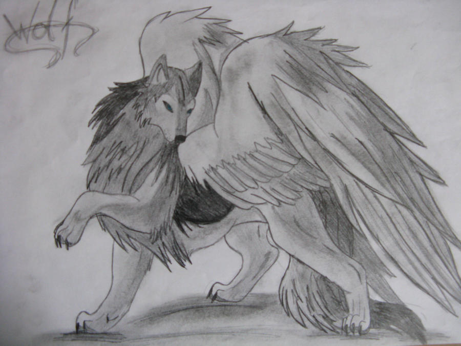 Grey Wolf with Wings by Skypi50 on DeviantArt