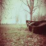Black Sails in the Woods by Vrohi