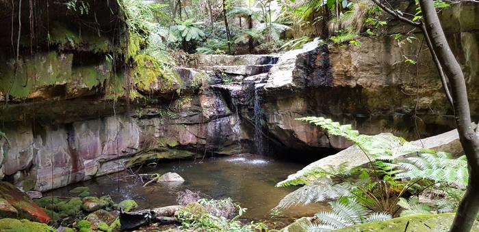 Carnarvon Gorge - 3 (Moss Gardens)