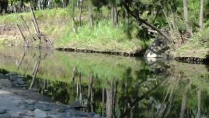 Reflections of Carnarvon - 2