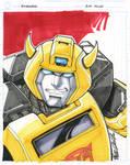 CS bumblebee