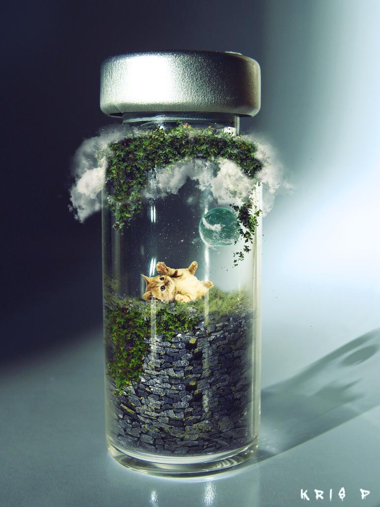 Cat in a Jar Photomanipulation by TechnoEnergy279