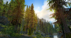SkyrimSE: Sunrise over the treetops