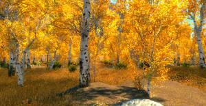 SkyrimSE: Golden Forest path