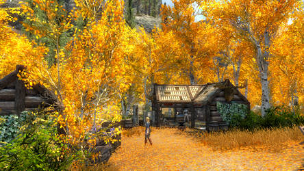 SkyrimSE: A day in the life of the Hunter's Guild