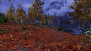 Fall leaves roadway