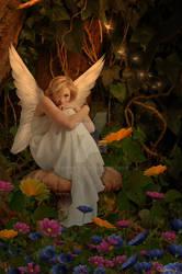 The Fairies Garden...