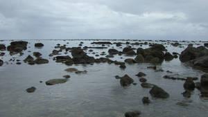 rocky shallows