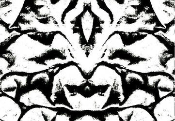 Kaleman by pheydal