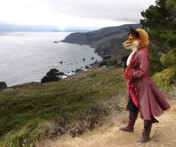 Pirate Fox by BlueHyena
