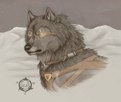 Northern spirit by Dalkur