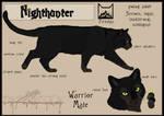 Nighthunter sheet