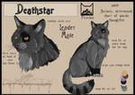 Deathstar sheet