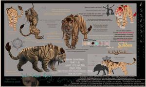 Jay - Tiger form Ref sheet