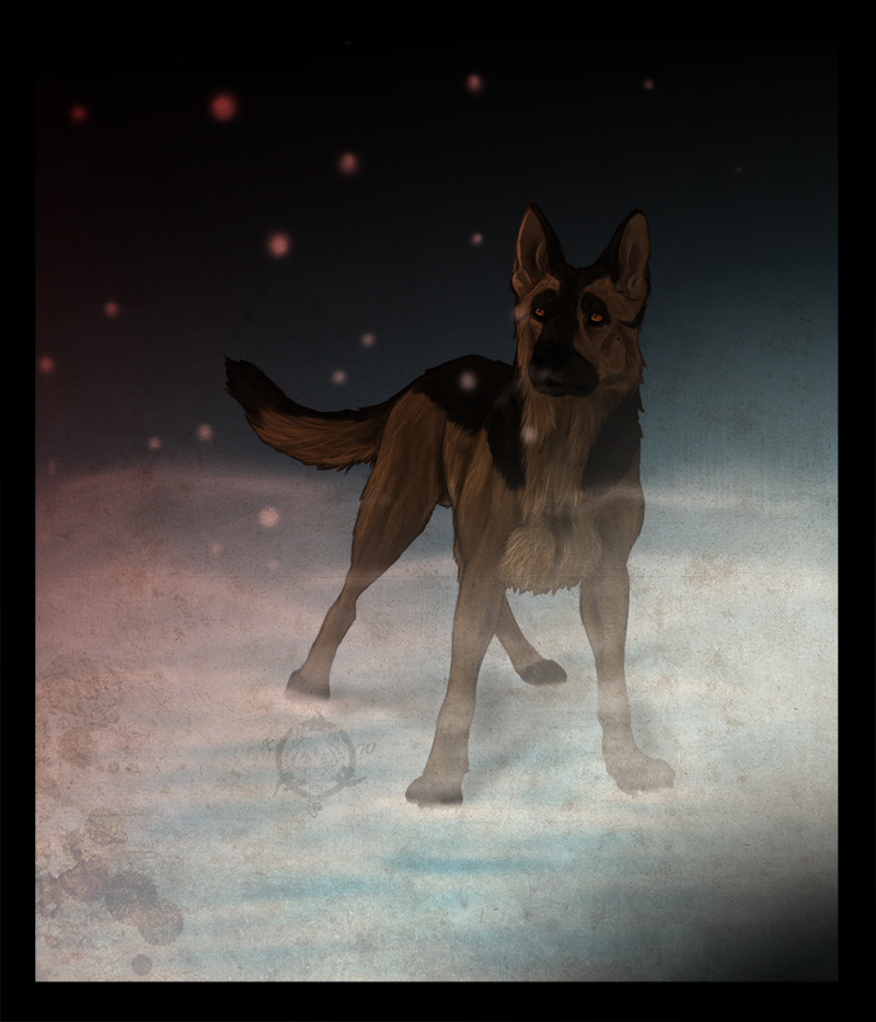 Red snow by Dalkur
