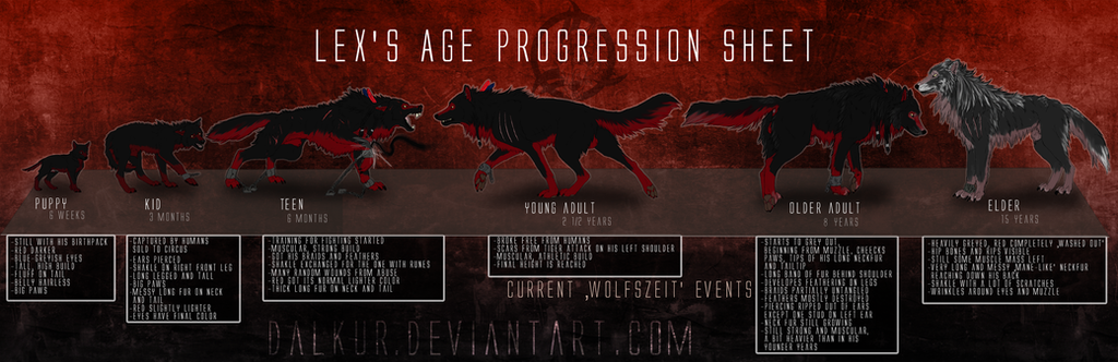 Lex's age progression sheet by Dalkur