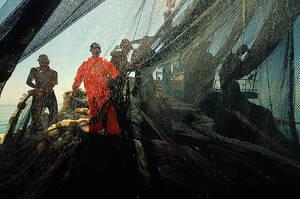 fisher VI by fotoizzet