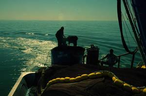 fisher VII by fotoizzet