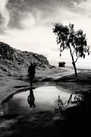 wait for the _Dawn_ by fotoizzet
