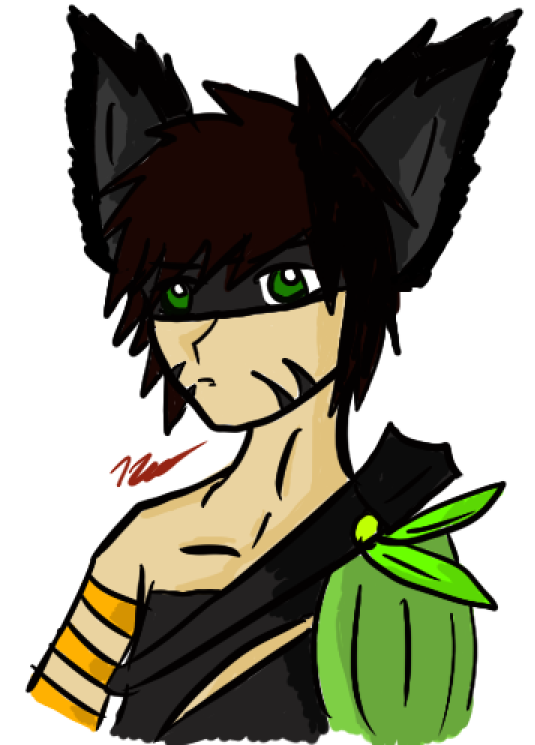 The Neko Warrior by PrinceNeoShnieder