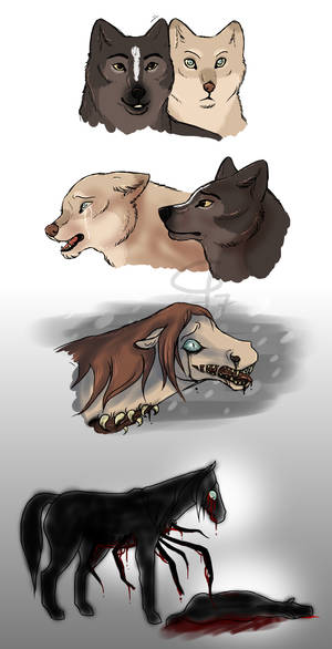 and even more shapeshifters