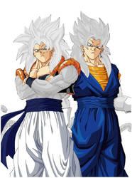 Gogeta and Vegeto SSJ God ( Phase 4 )