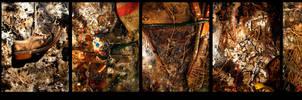 ayakkabipaylacobocek by CSISMAN