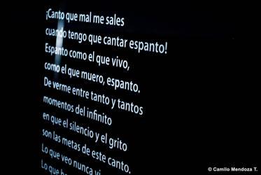 (Des)Fragmento by Camilofotografo