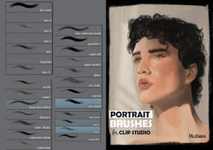 Portrait Brushes for Clip Studio Paint