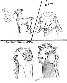 Drama-Llama