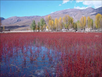 Autumn Colours in Si Chuan 6 by StarflameMoonfire