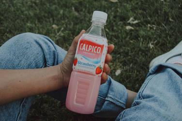 Bebida Calpis/Calpico