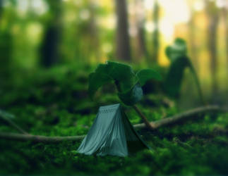 Pre Made Background Tiny Tent by praveengurukulam