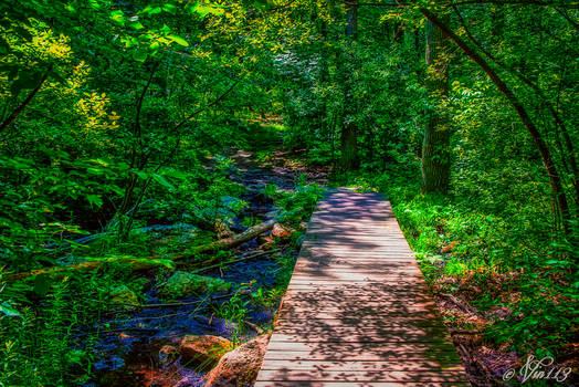 Creek Crossing-1