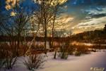 Chestnut Hill Winter-2