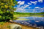 Lakeside View 8